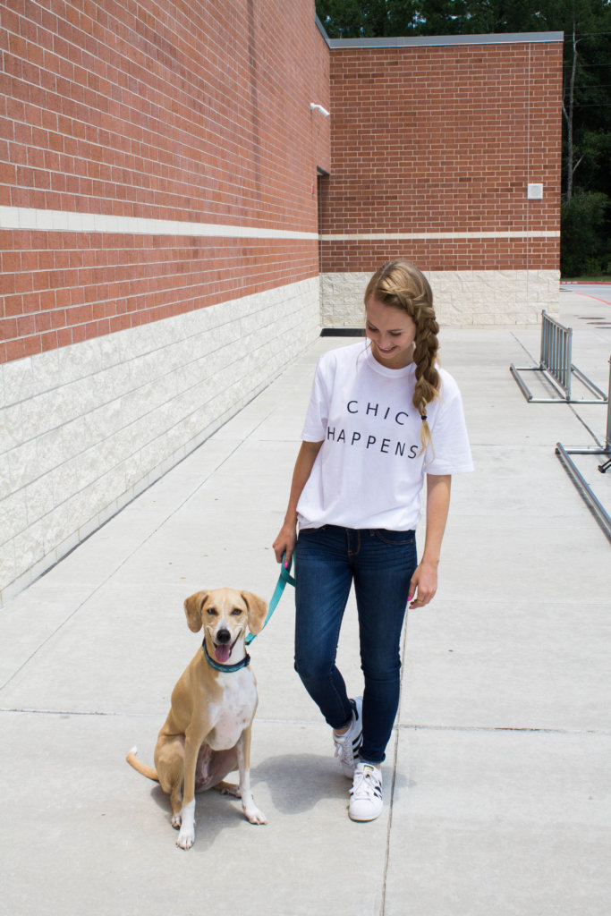 What it's like owning a dog in your 20's. Quick Q+A to get to know Quinn and what it was like owning a dog as a college student | The Blonder Life