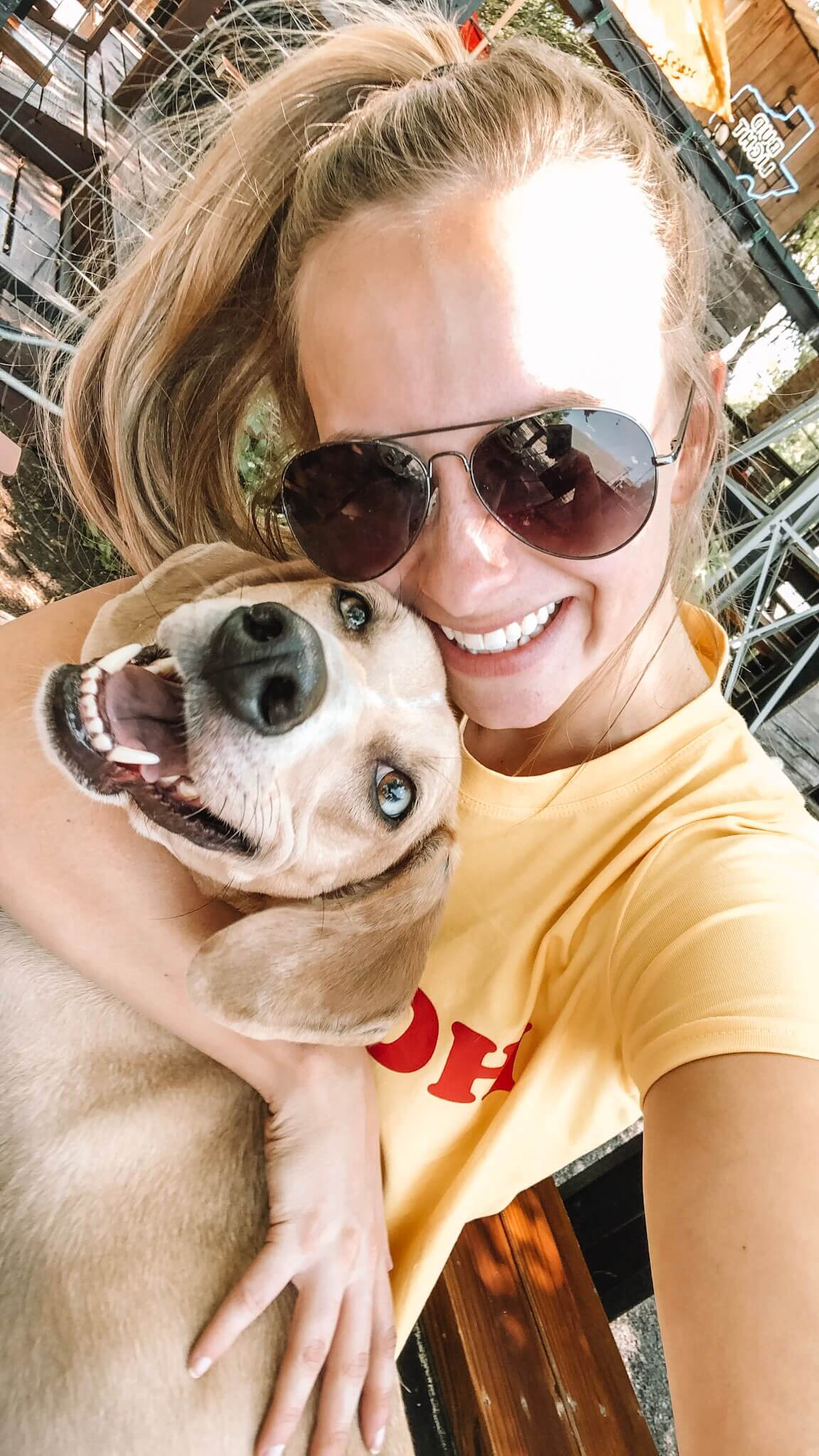 Dog Friendly Houston Guide - The Blonder Life